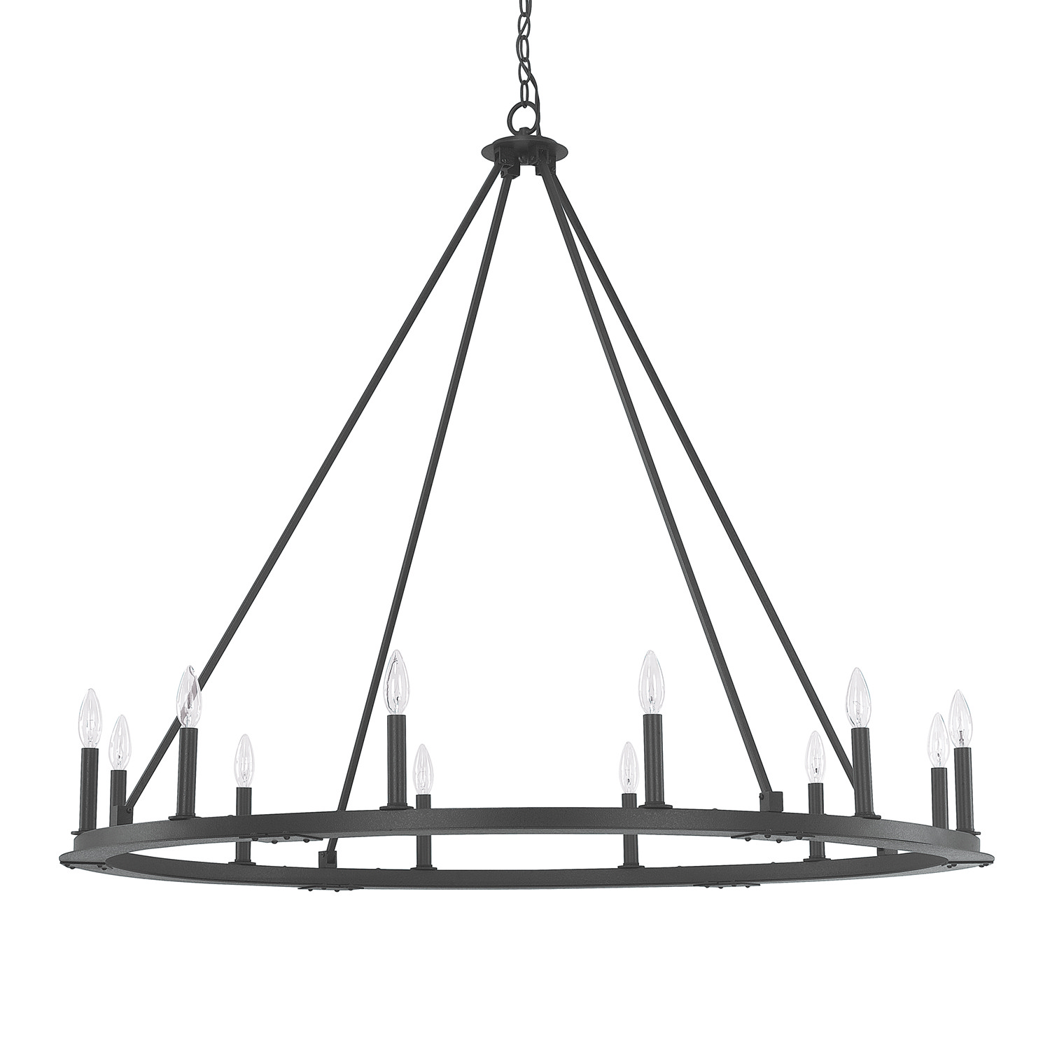 12 Light Chandelier from the Pearson collection by Capital Lighting 4912BI 000