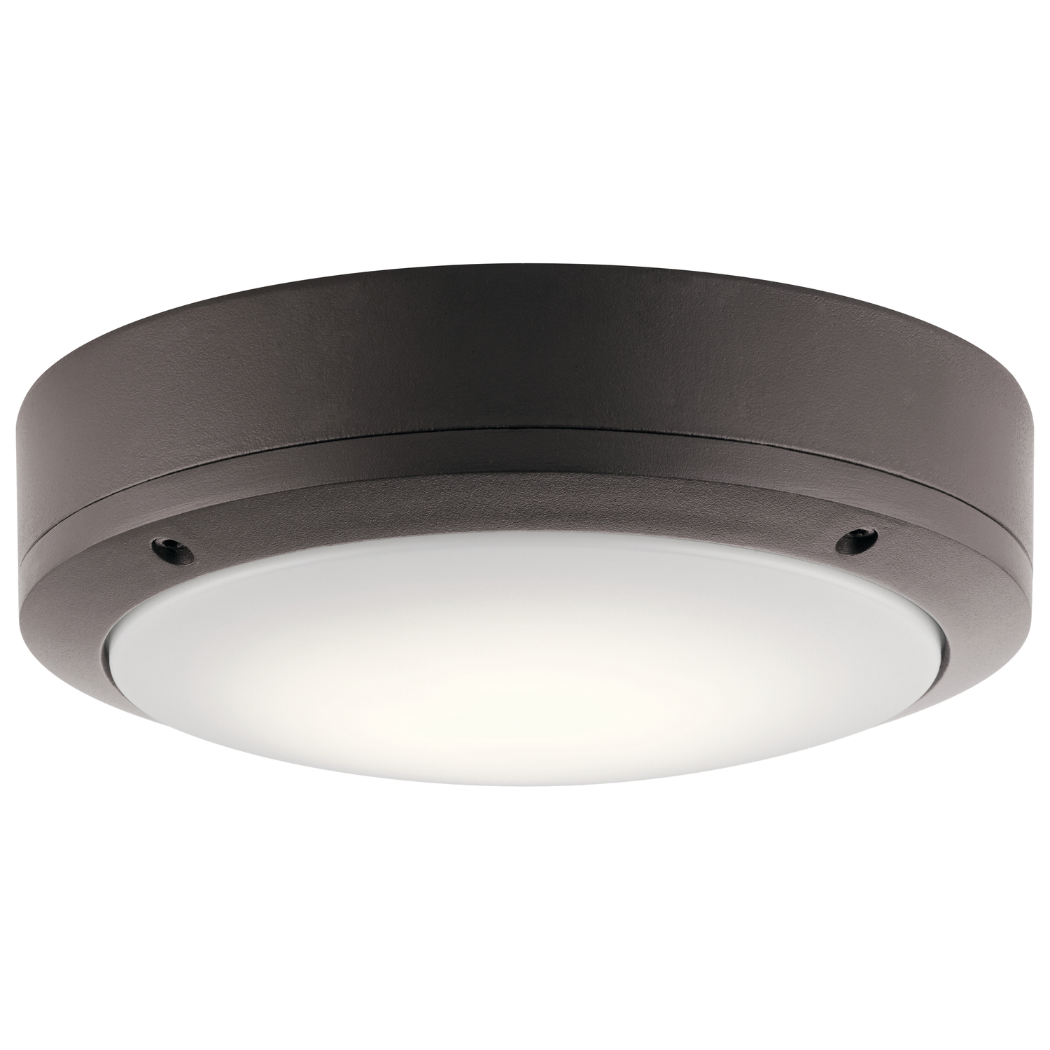 LED Outdoor Wall/Ceiling Mount