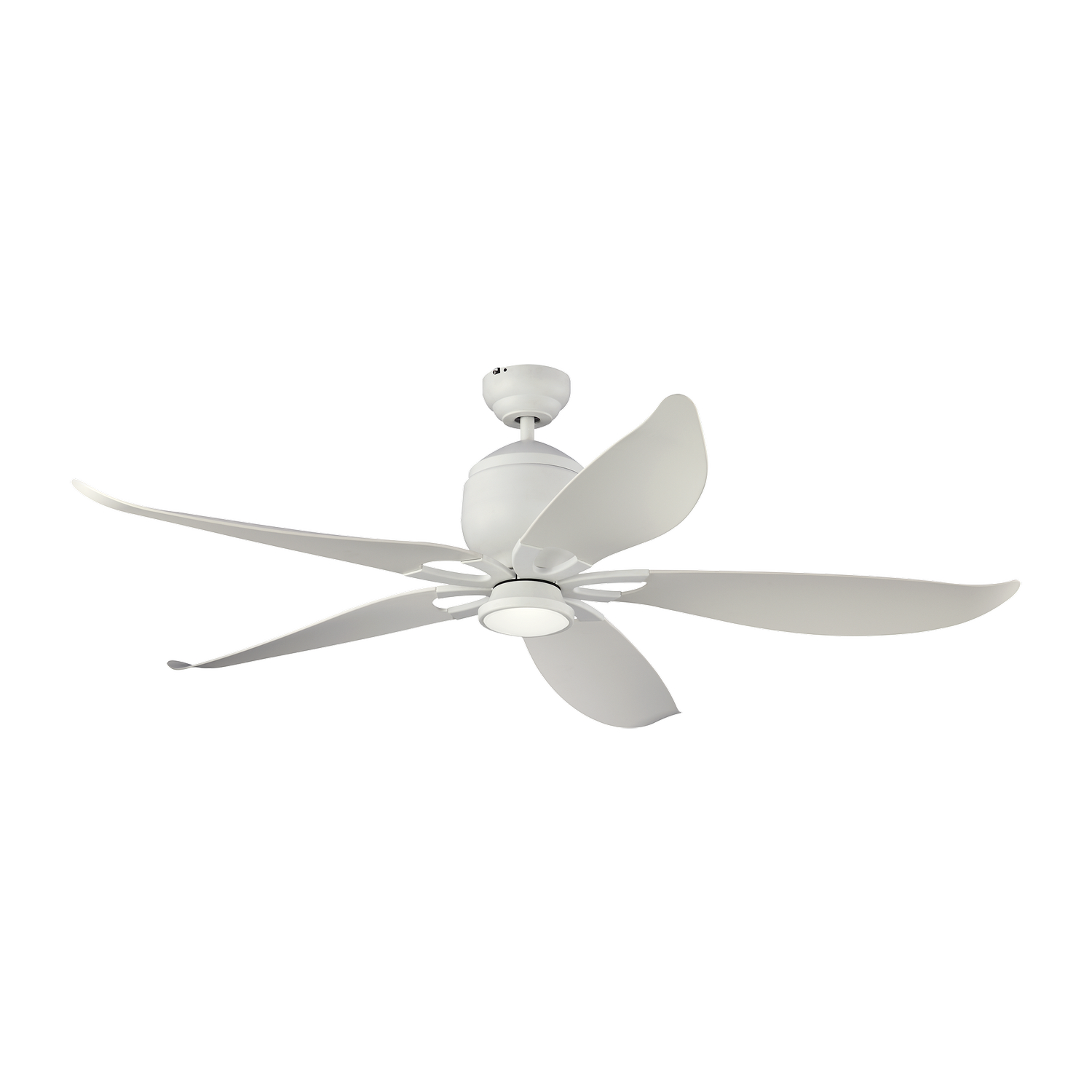 56 inchCeiling Fan from the Lily collection by Monte Carlo 5LLR56RZWD V1